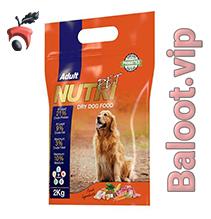 غذای خشک پروبیوتیک سگ